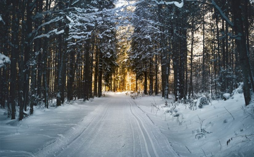 Winter roadside safety and having the proper tire traction mats…